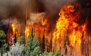 Blazing Fires Destroys 8 Structures Near Yosemite!