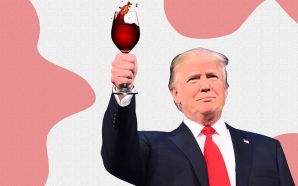 Does President Trump Own A Winery In Charlottesville? You Gotta…