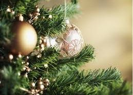 Safety tips about your Christmas tree for a safe holiday…