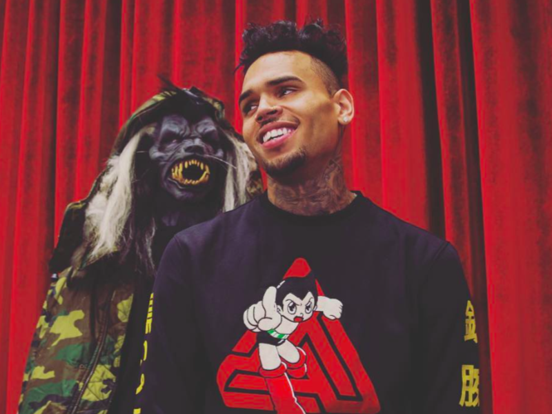 Chris Brown Could Be Prosecuted Over Exotic Monkey ...