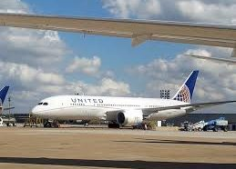 United Airline puts a hold on pet-cargo