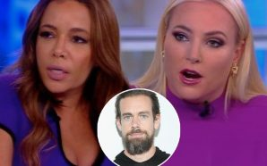 'The View' Unloads on Twitter as Meghan McCain Details Horrific…