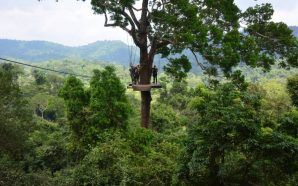 Tourist dies in Thailand zip line accident