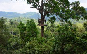 Tourist dies in Thailand zip line accident
