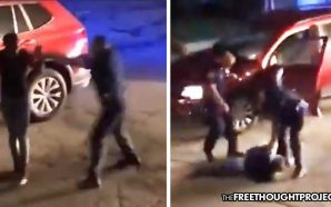 Cop put on Administrative Leave After Pistol-Whipping Black Teenager He…