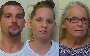 FAMILY BUST: Mom, two adult children jailed after car chase