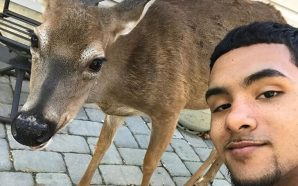 BROTHER NATURE INSTA-CELEB GETS STOMPED OUT!!! Brutal Miami Attack on…