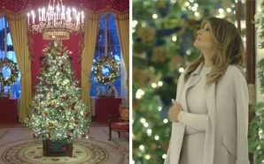 Check Out The White House Christmas Tree This Year