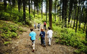 231 children test positive for COVID after attending summer camp…